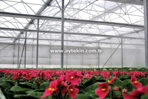 Flower Greenhouse Company