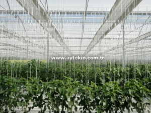Greenhouse Plant Hanger System
