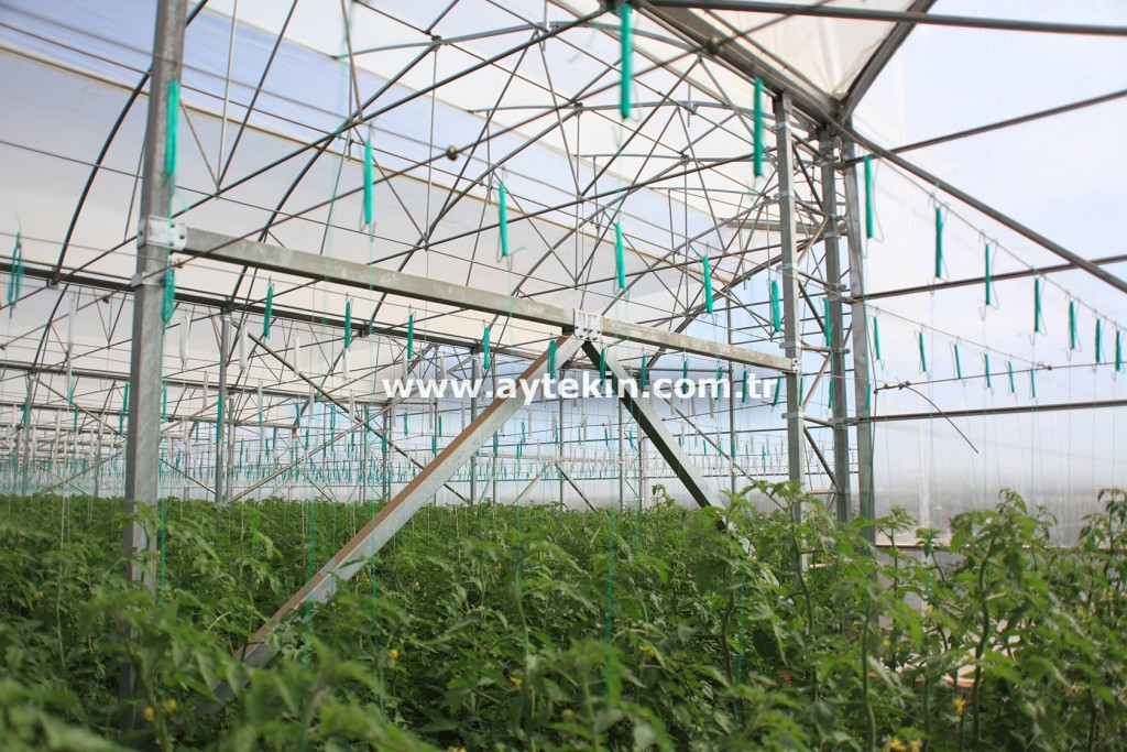 Greenhouse Steel Construction Cost