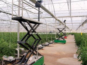 Greenhouse Harvest Process Trolley