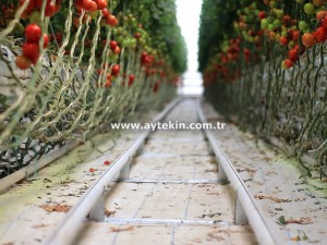 Greenhouse heating system prices