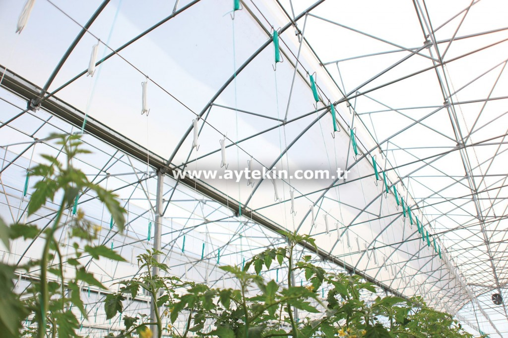 companies engaged in greenhouse in Antalya Turkey