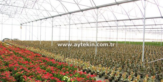 Greenhouse companies in Adana