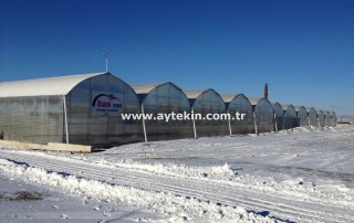 Afyon greenhouse firms