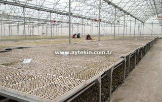 Ankara Greenhouse