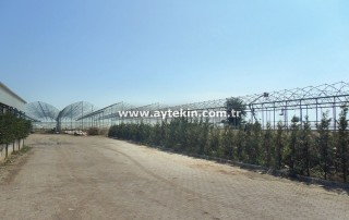 Antalya greenhouse prices
