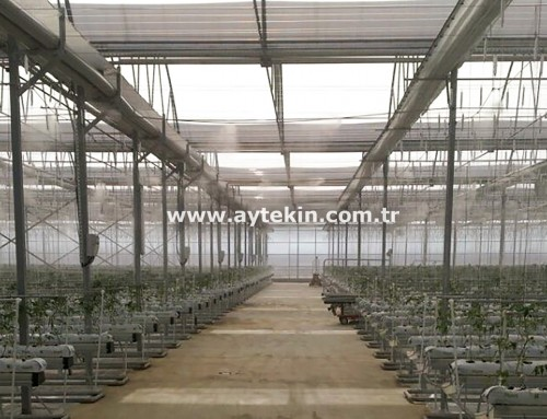 Soilless Agricultural Greenhouse Azerbaijan