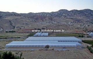 Denizli greenhouse companies