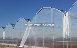 Iraq Greenhouse Firms
