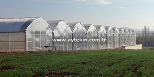 Greenhouse companies Afyon
