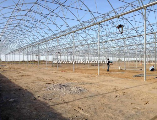 Soilless Agricultural Greenhouse Turkmenistan