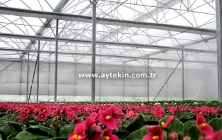 Yalova greenhouse contractors