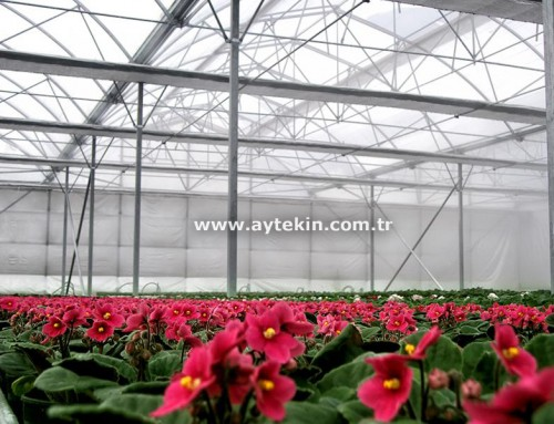 Flower Greenhouse Yalova